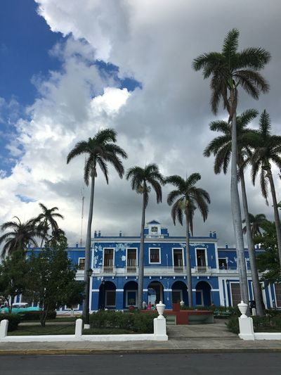 Cuba Palm Tree Tree Architecture Building Exterior Built Structure Sky Cloud - Sky House No People Outdoors