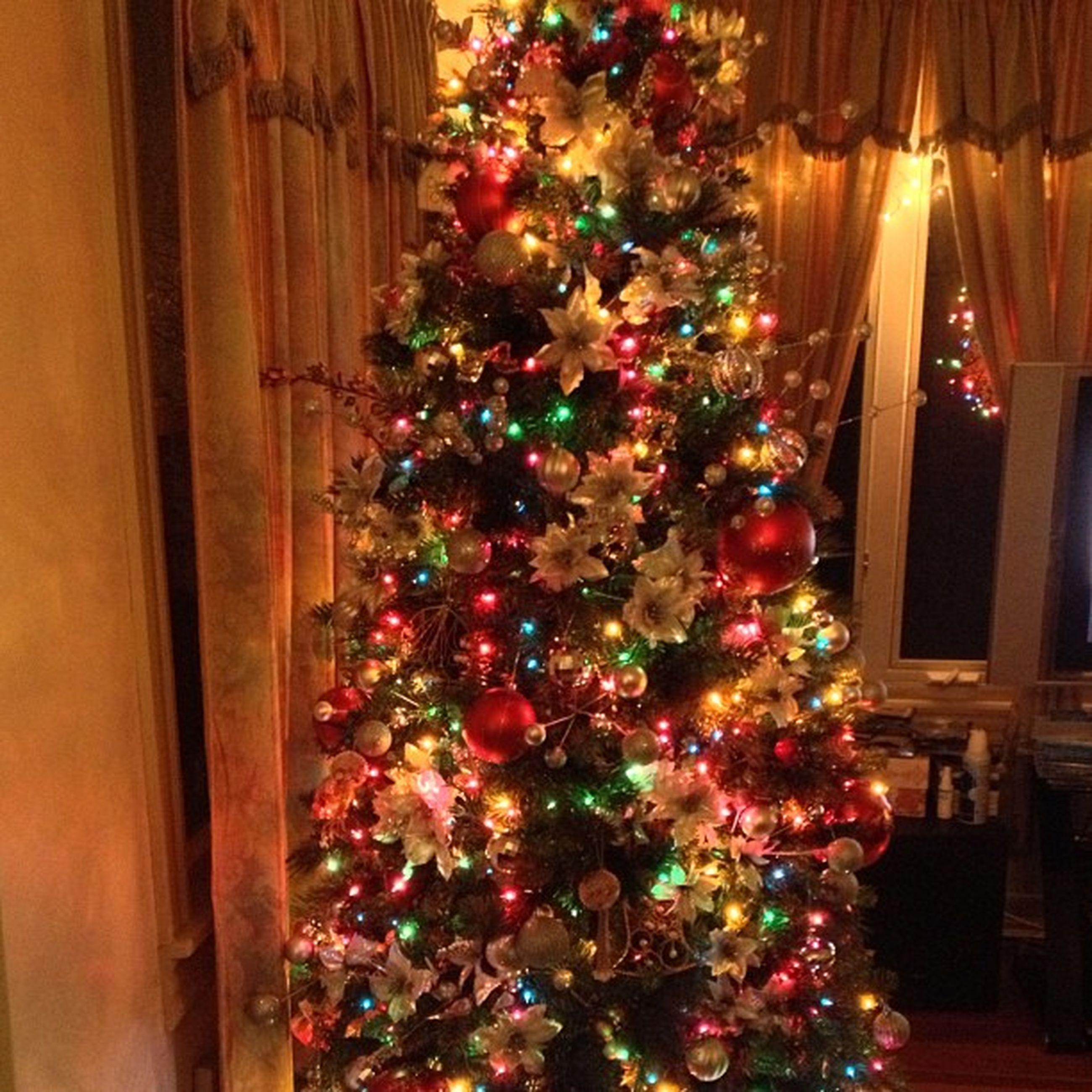 flower, decoration, celebration, indoors, christmas, tradition, illuminated, christmas decoration, christmas tree, house, freshness, built structure, bouquet, hanging, multi colored, architecture, decor, religion, abundance, cultures