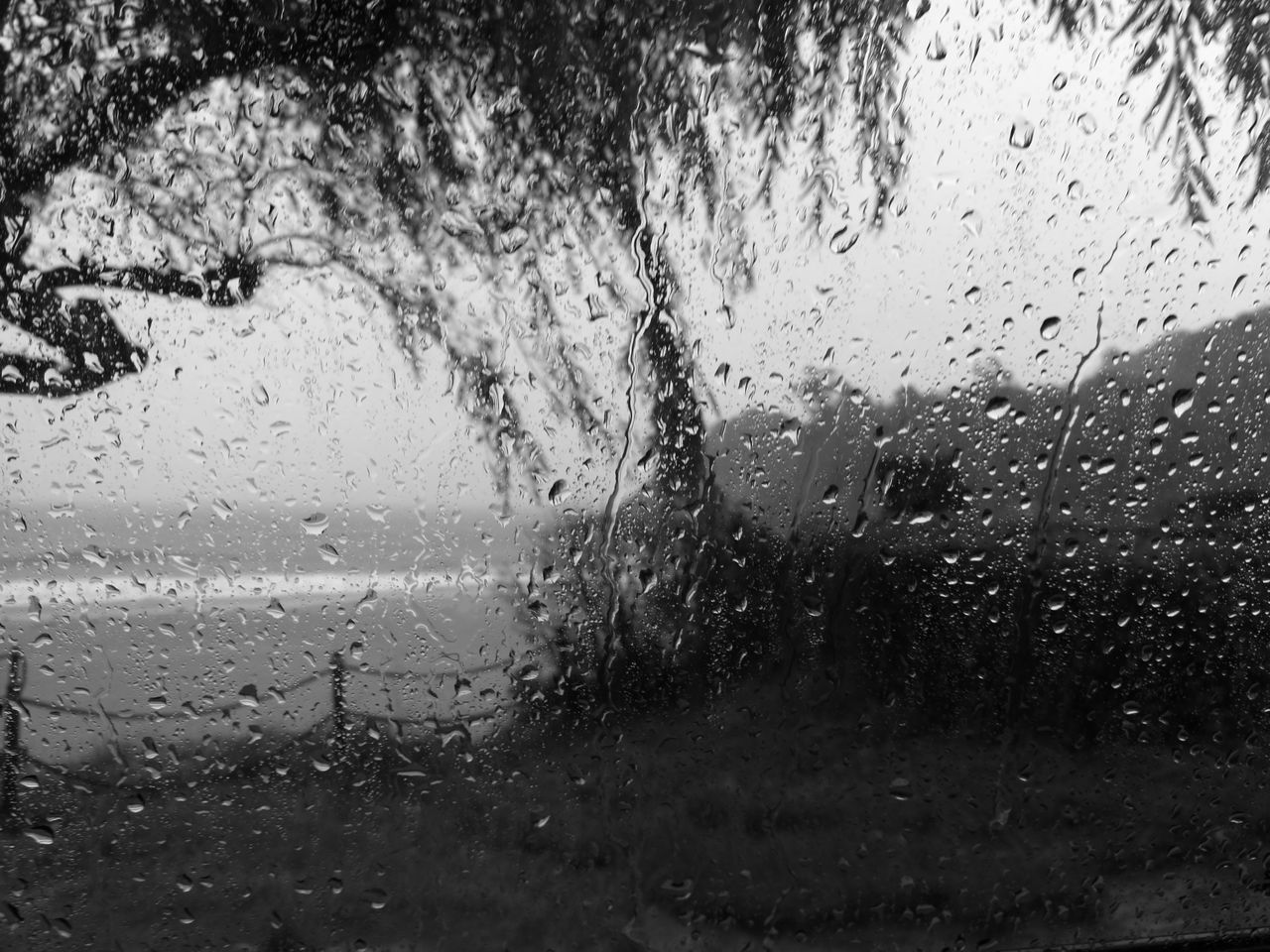 drop, glass - material, wet, water, window, no people, indoors, car, raindrop, land vehicle, backgrounds, close-up, day, nature, freshness, sky