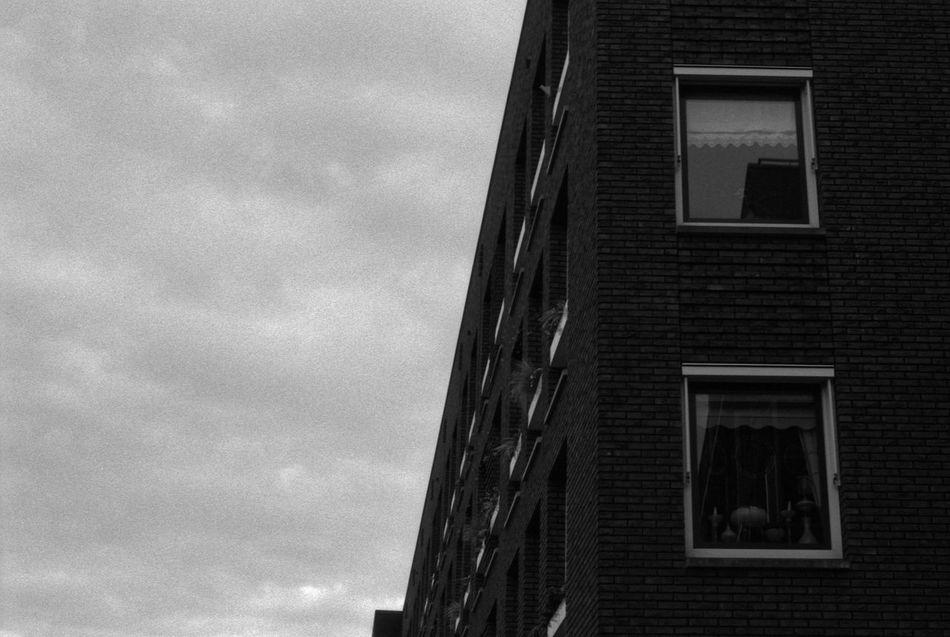 Windows 35mm Film Analogue Photography Apartment Architecture Black & White Bricks Brickwork  Building City Clouds Contrast Fomapan100 Glass Lines Masonry Modern Modern Architecture Repetition Rodinal Sky Urban Window