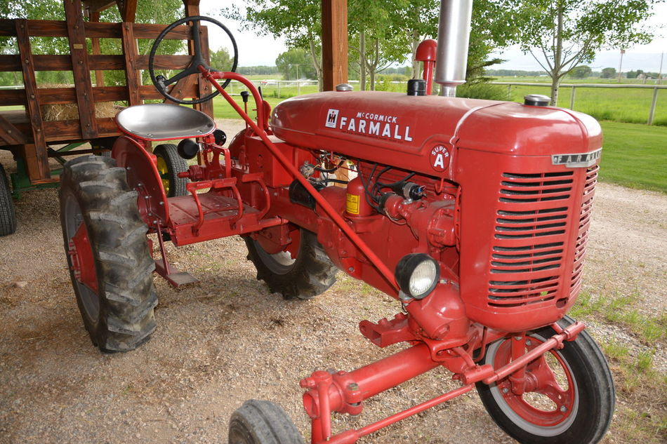 Absence Close-up Day Equipment Farmall Farming Farming Vehicles Grass Growth Land Vehicle Locomotive Machinery Mode Of Transport No People Old Tractor Old Tractor Never Dies Old Tractors Outdoors Parked Parking Red Renewal  Stationary Wheel