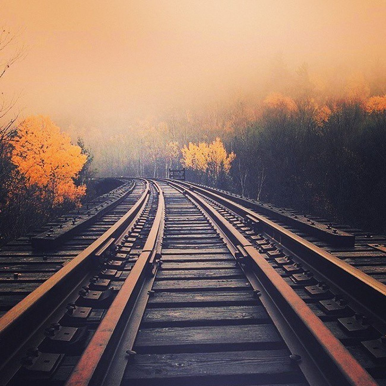 Beautiful pic ! Picoftheday Pic Beautiful Train Ferrovie Canadian Hifi Sky Clouds Canada Follow4follow Followmeplease