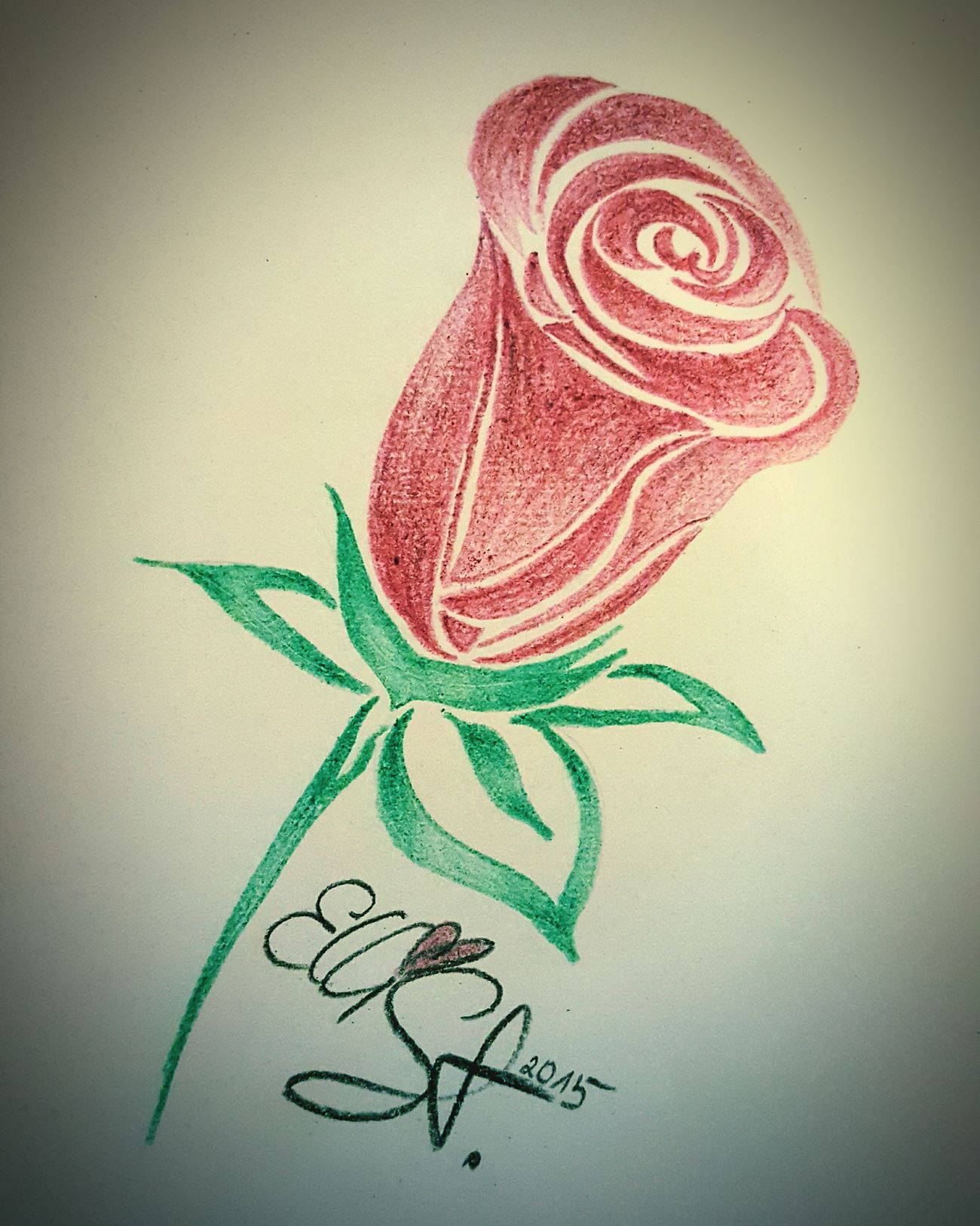 GraphitePencil Drwing Colors Roses Art, Drawing, Creativity Flowers Tribal