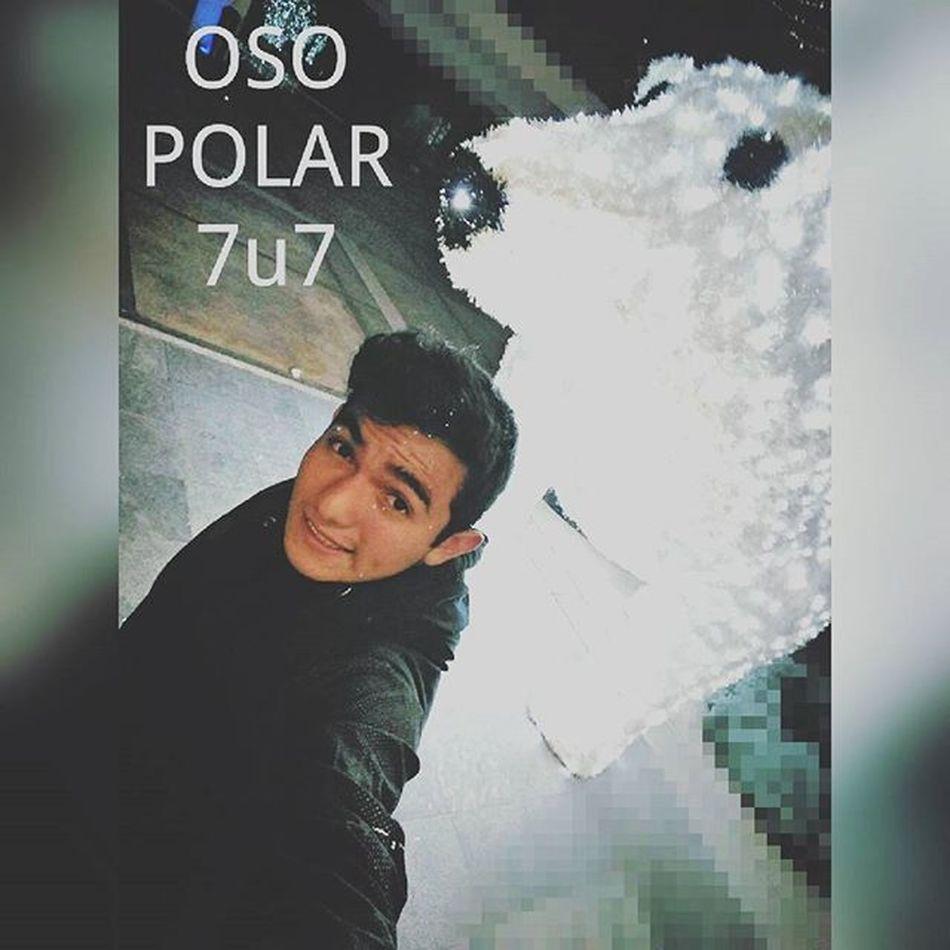 Después de tanto tiempo EH vuelto a insta Jeje feliz navidad hahaha todavía no estamos en navidad pero aún así Happymerrycrismas Yo y mi oso polar 7u7 *-*