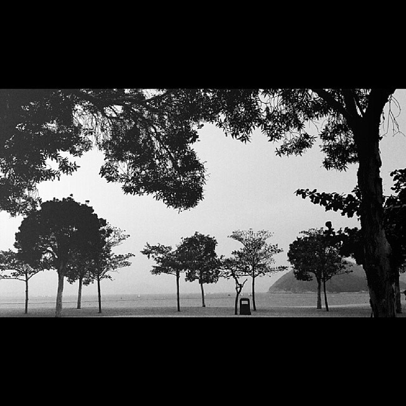 HongKong Beach Repulsebay Blackandwhite monochrome tree samsungnote3 landscape