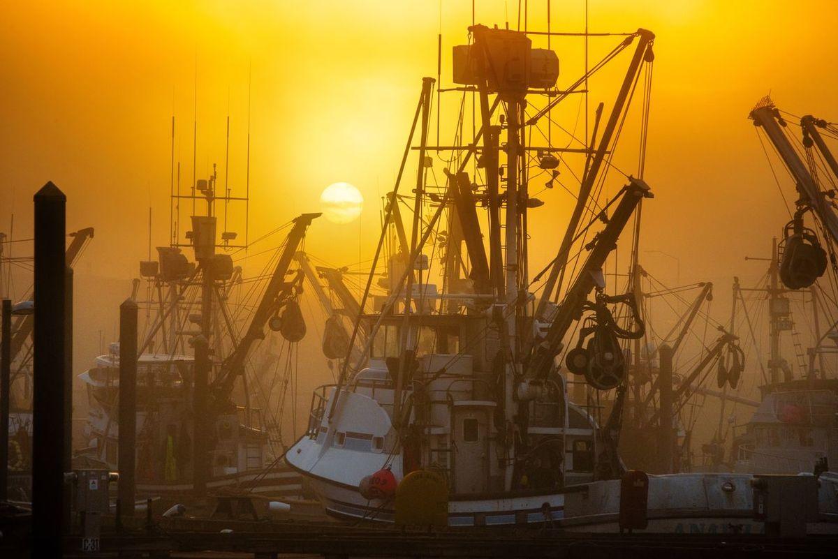"""Early Start"" Fishing Trawler Fishing Vessel Foggy Sunrise Harbor Sunrise Nautical Vessel Shipyard Sky Sunrise Fog Sunrise Fog Nature No People Sunrise Silhouette Sunset Wharf Wharf Side"