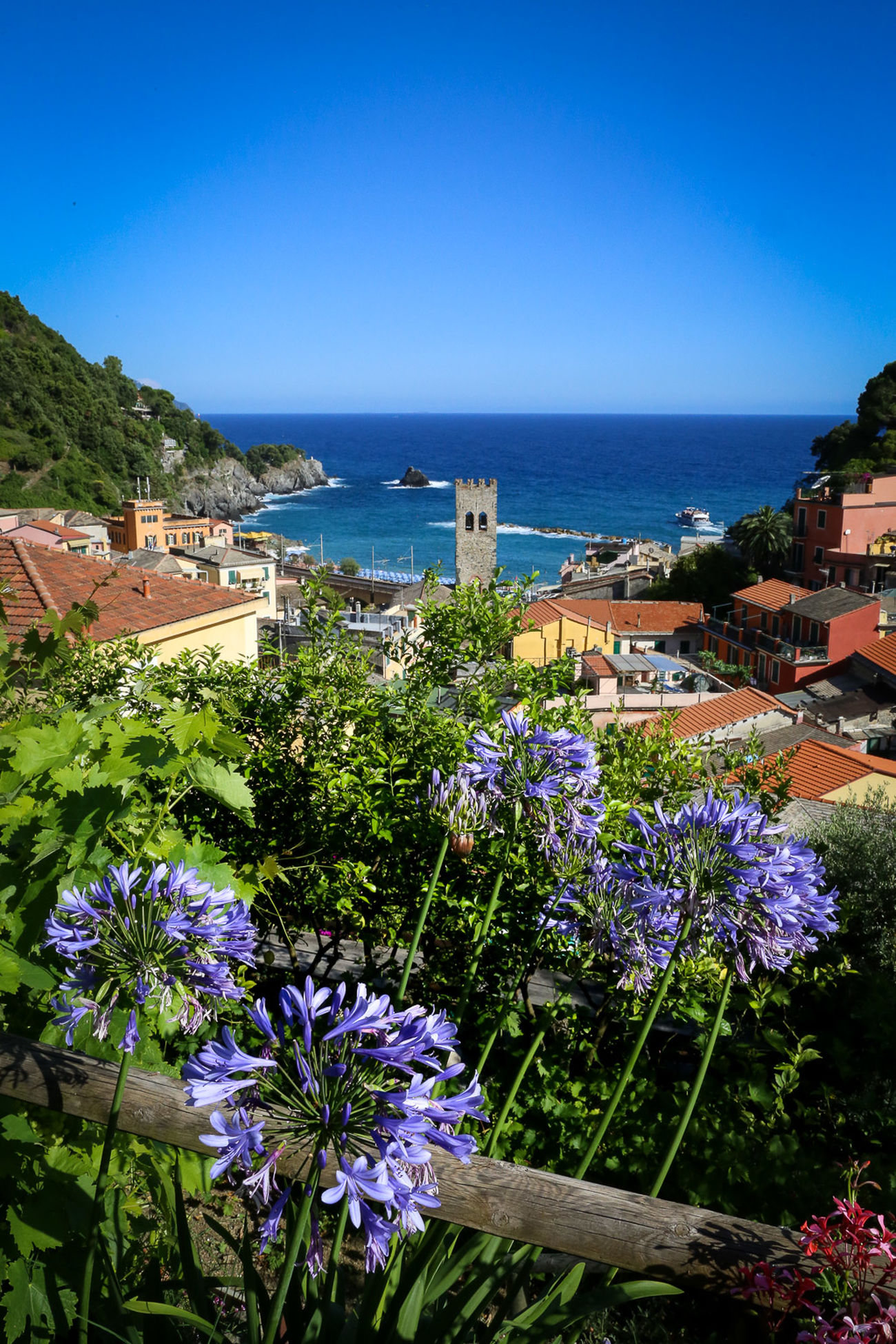 Monterosso Traveling Travel Travel Photography Landscape Landscape_Collection Seascape Italy Italia Cinque Terre Flower Blue Horizon Over Water Sea Clear Sky Water Beauty In Nature Growth Building Exterior Scenics Fragility Freshness Plant Nature In Front Of In Bloom