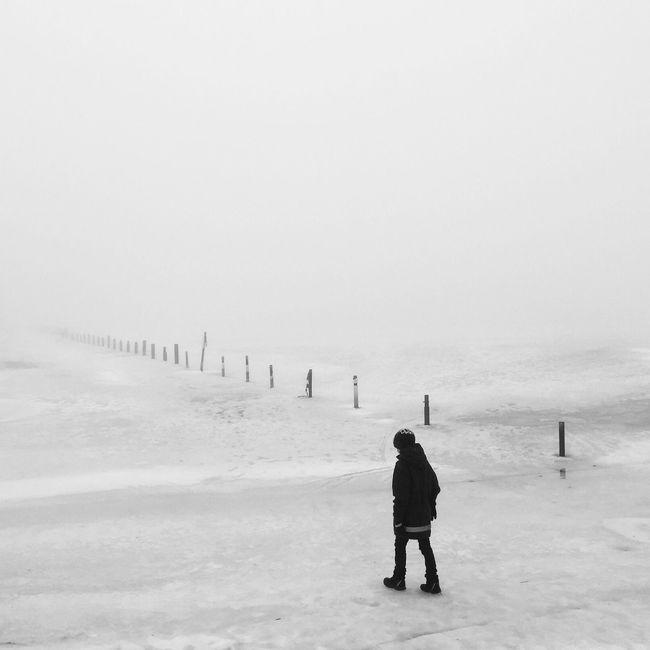 Monochrome Blackandwhite Winter Silhouette