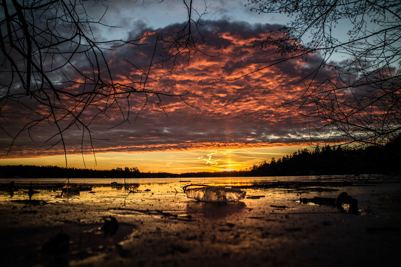 Beauty In Nature Cloud - Sky Dramatic Sky Nature No People Outdoors Reflection Scenics Silhouette Sky Sunset Tranquility Tree Water