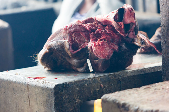 A partially butchered cow's head lies on a table in a market in Warwick Junction, Durban, South Africa. Blood Bovine Butcher Close-up Cow Day Focus On Foreground HEAD Market Meat Nature No People Outdoors Selective Focus