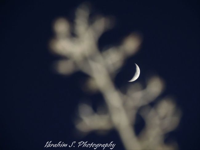 Cresent Moon Moon in the Night Sky Night Ibrahim S Photography