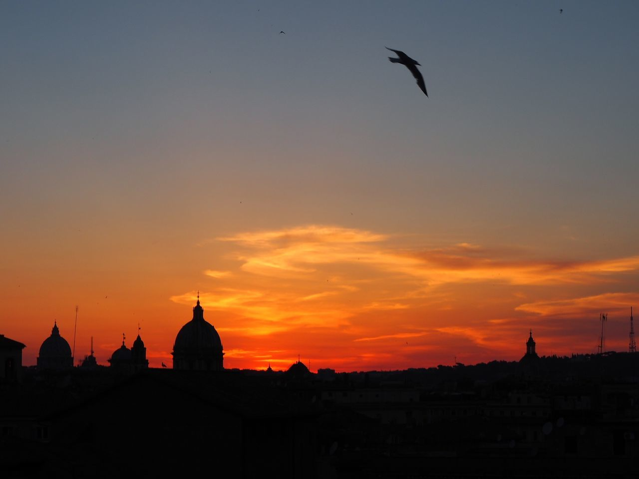 sunset, architecture, silhouette, flying, building exterior, no people, sky, city, outdoors, nature, bird