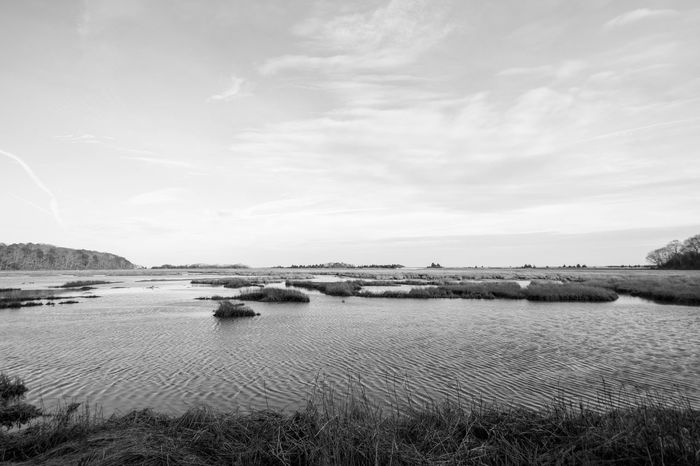 At B&w Blackandwhite High Tide Marsh Nature Plymouth Plymouth Hoe Salt Sea Tranquil Scene Tranquility Wide Angle