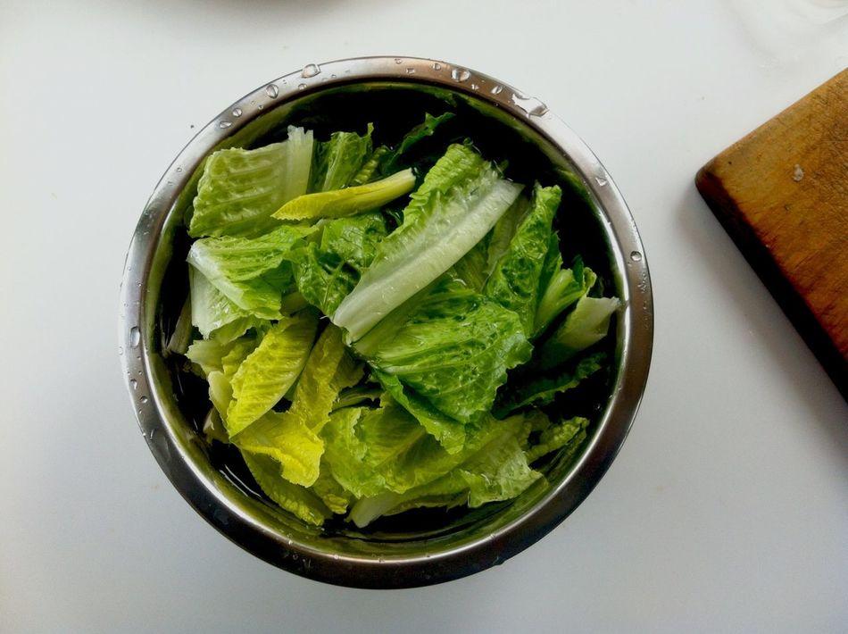 Lettuce Lechuga