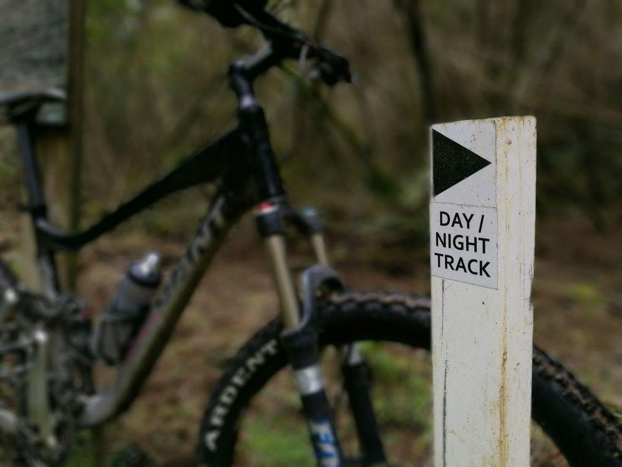 Morningride🚲 Mountainbike Giant Bikes MTB ADVENTURE MTB Singletrack Cougarpark