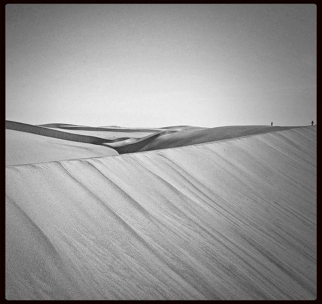 Blackandwhite Landscape Desert