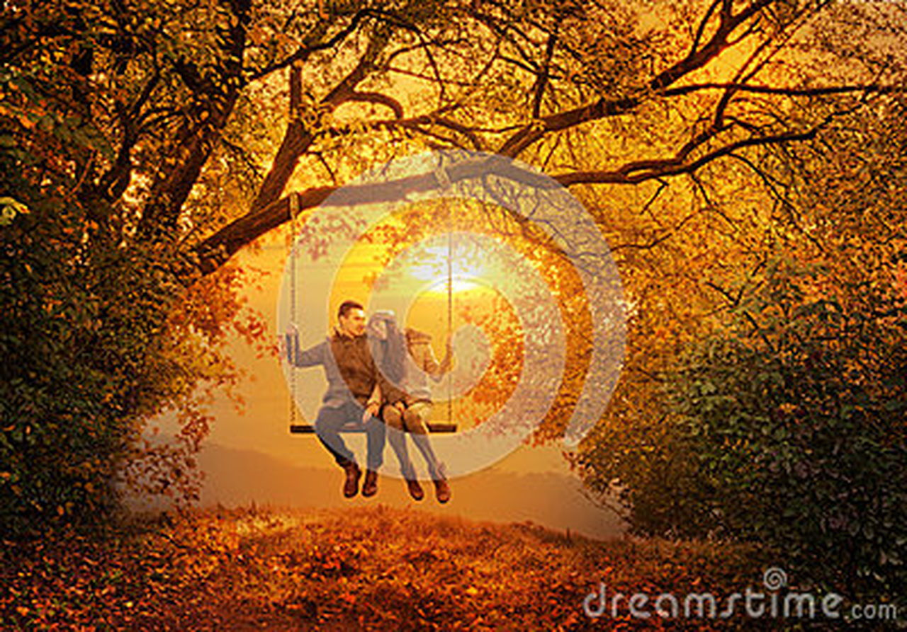 two people, autumn, togetherness, full length, tree, adventure, people, change, men, friendship, adult, night, nature, running, leaf, outdoors, bonding, journey, standing, sunset, teamwork, forest, grass, escape, technology, adults only, halloween, young adult