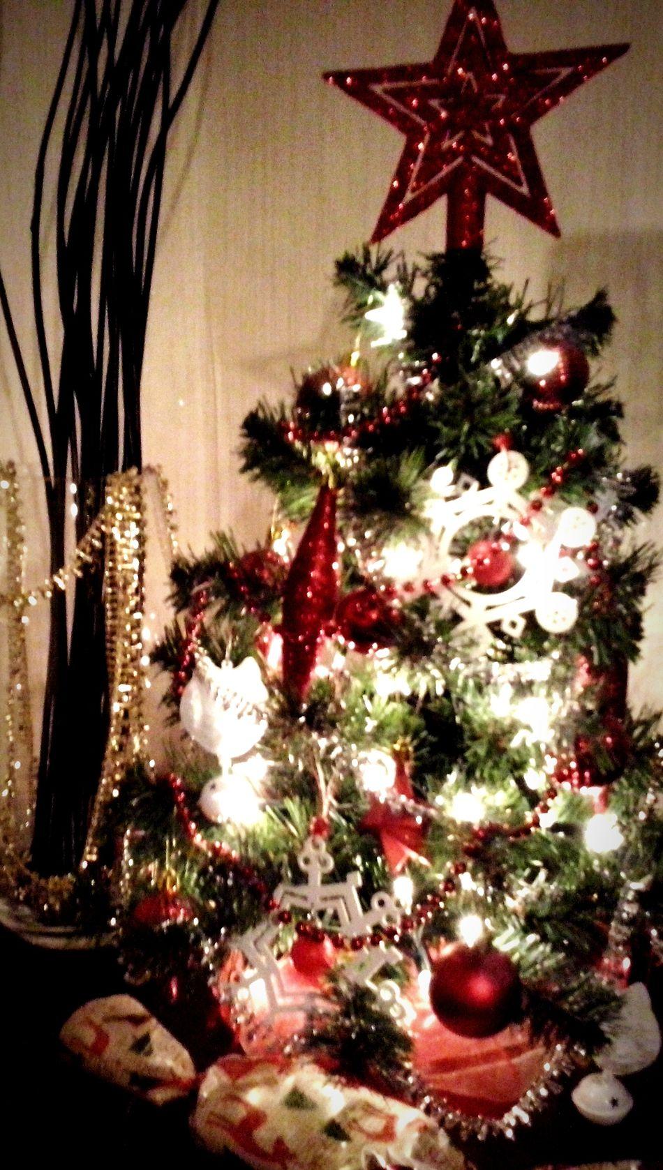 Christmas Tree Merry Christmas! Hello World my tree:)