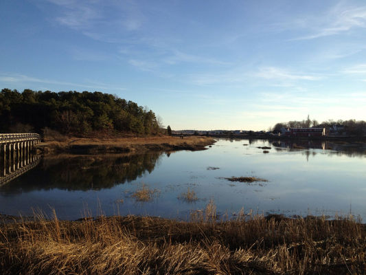 fall in Wellfleet by Jacob Janssen