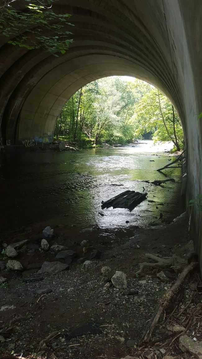 Nature On Your Doorstep State Park  Tunnel Nature Raw Beauty Nature Photography Photography