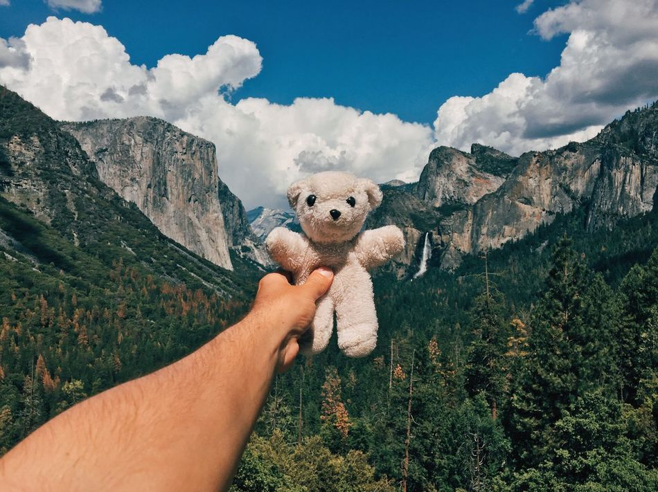 "In 1991, my parents were on a road trip across the U.S. and brought me a white teddy bear from Yosemite National Park as a gift in a bag from the park. I don't have many young childhood memories but I remember this one perfectly. ""Iôzemite"" I've named it, like saying ""Yosemite"" in a wrong way in portuguese, because that's how I read it on the bag. Today, 25 years later, he came back home. 🌲🐻🌲 Lieblingsteil Human Hand Human Body Part Cloud - Sky One Person Sky Holding Personal Perspective Outdoors Day Men Mammal Building Exterior Mountain Architecture Real People One Man Only Nature Domestic Animals Beauty In Nature People Teddy Bear Childhood Memories Toys Long Goodbye"