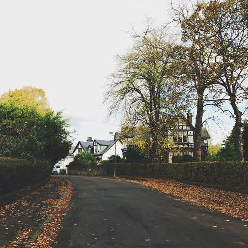 Fall Tree Street Road Outdoors The Way Forward No People Day Built Structure Building Exterior Nature Architecture Sky Scotland Glasgow  First Eyeem Photo
