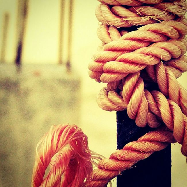 Rope Tied Color Os Super Macro Oneplusone Mobile Photography Showcase March