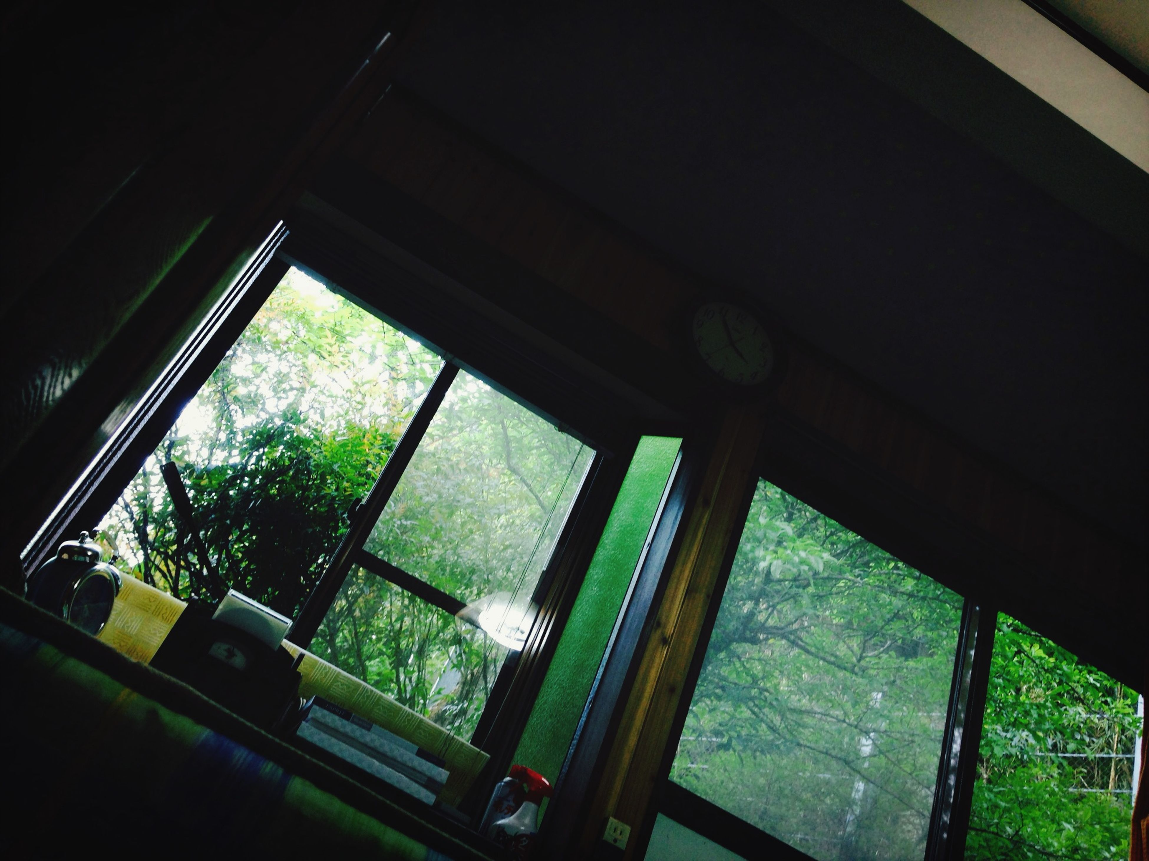 window, indoors, architecture, glass - material, built structure, low angle view, railing, transparent, no people, metal, building exterior, day, house, green color, sunlight, tree, building, reflection, growth