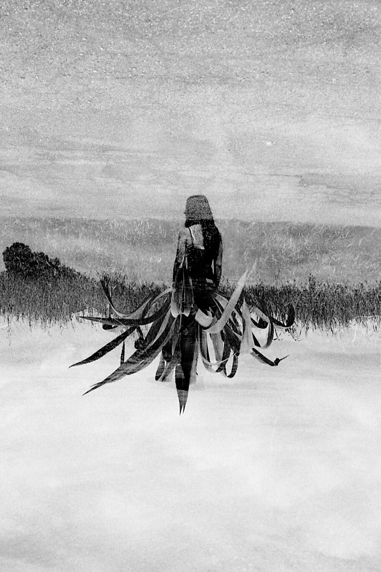 Hydra. Nikon woman portrait EyeEm Nature Lover EyeEm gallery EyeEm Selects doubleexposures BW Collection PortraitPhotography filmisalive filmisbetter people_bw black and white collection Staring At The World EyeEm Best Shots Ishootfilm Analogue Photography People And Places. Double Exposure filmisnotdead portraits of EyeEm The Portraitist - 2017 EyeEm Awards filmisawesome The Great Outdoors - 2017 EyeEm Awards blackandwhite agave plant EyeEmNewHere Breathing Space The Week on EyeEm mix yourself a good time