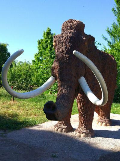 Ruta del Mamut. Padul. Granada. Elephant One Animal Animal Themes Mamut Mamooth