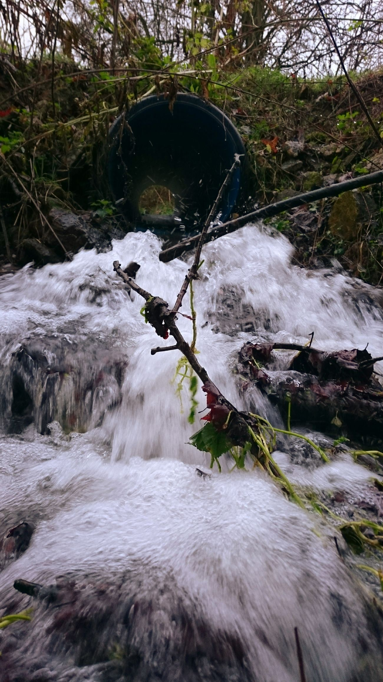 Taking Photos Small Waterfall Watching Waterfalls Waterfall #water #landscape #nature #beautiful Winter Woodland Woodland Streams Streams Of Water Streams Waterscape Bare Branches Water Waterfall Beauty In Nature Naturephotography Cascadingwater Torrent MossyRocks