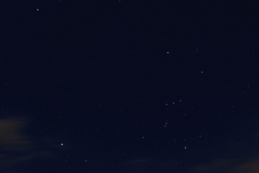 Stars Orion Winter