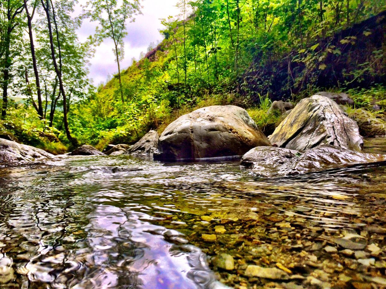 #hiking #through #pantperthog #machynlleth #wales #adventure #forest #walk taken on my #iphone6splus by @jg.photography.official Hiking Hikingadventures Machynlleth Wales Forest Walk Water Rocks Rocks And Water Countryside Adventure IPhoneography