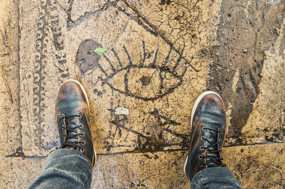 Shoe Standing Personal Perspective Human Body Part Outdoors Directly Above Street Urban Art Eye