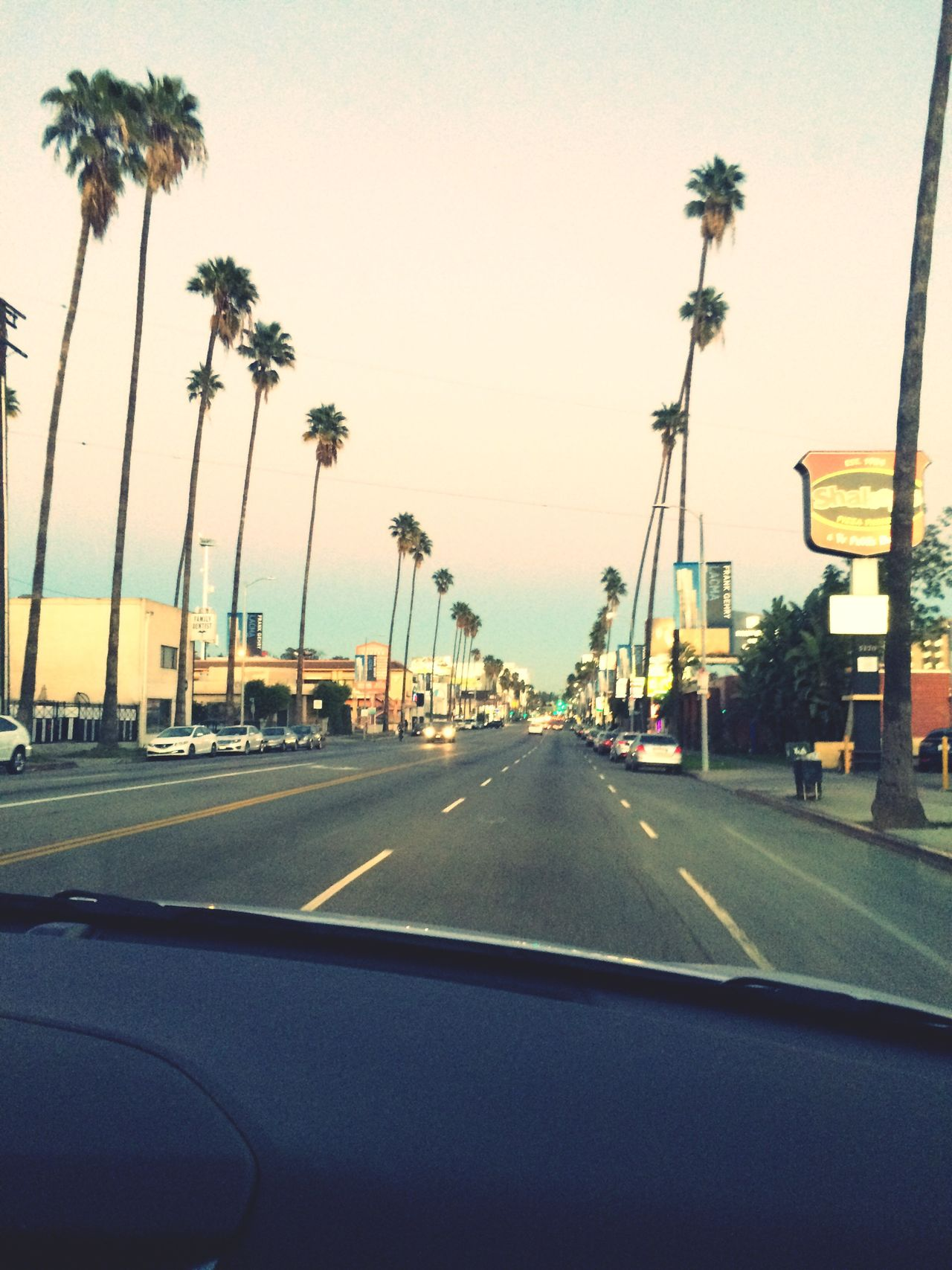 Check This Out Hello World Los Ángeles Flowerstothepeople Palm Trees Love ♥ Cheese! Relaxing