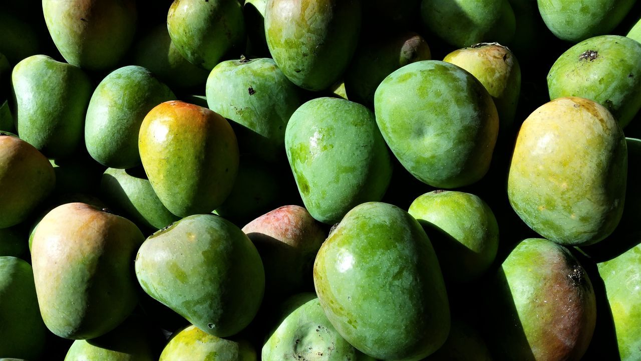 UNITY Close-up Day Food Food And Drink Freshness Fruit Full Frame Green Color Green Mango Healthy Eating Large Group Of Objects Mango Mangoes♥ Mangoose Mangosteen No People Outdoors Ripe Ripe Fruit Ripe Mangoes