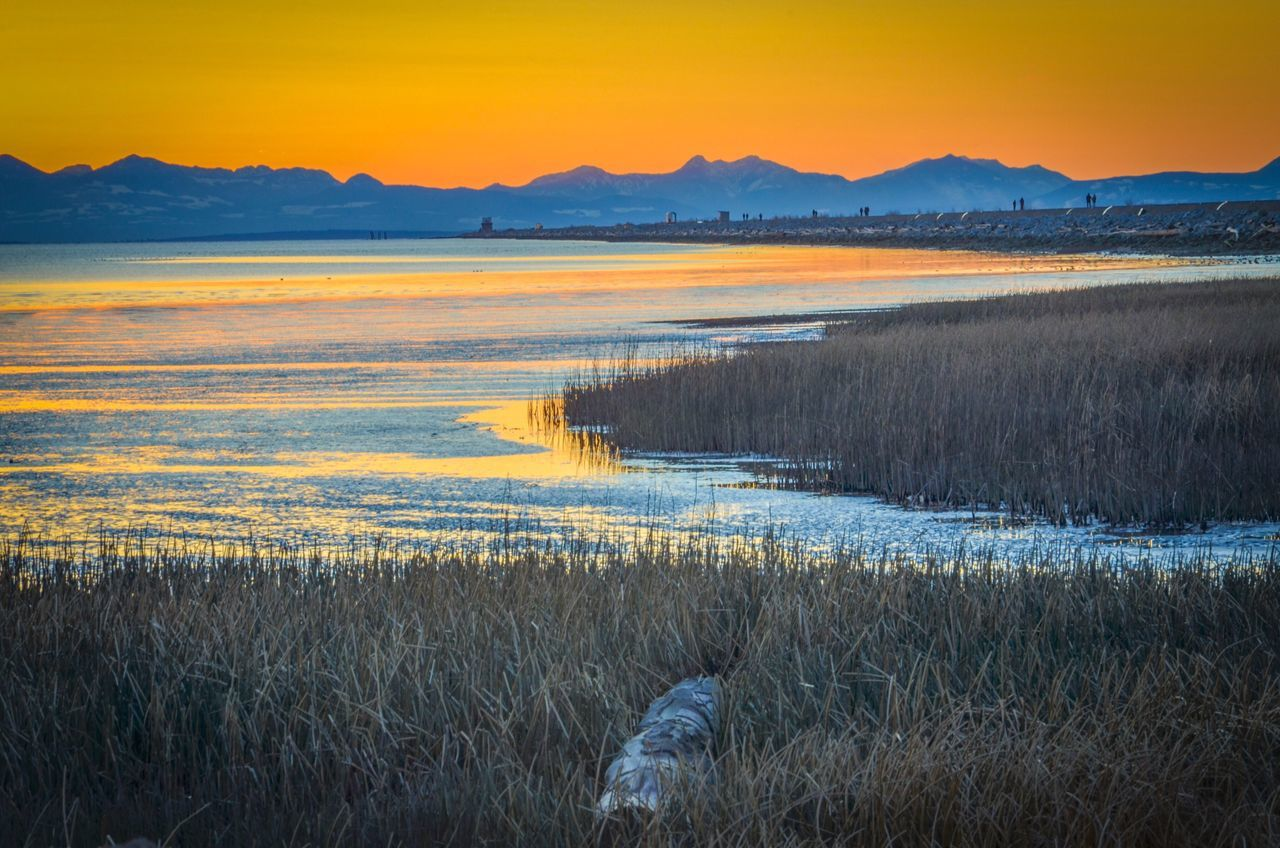 Iona beach Sun No People Beauty In Nature Nature Tranquil Scene Sunset Water Scenics Outdoors
