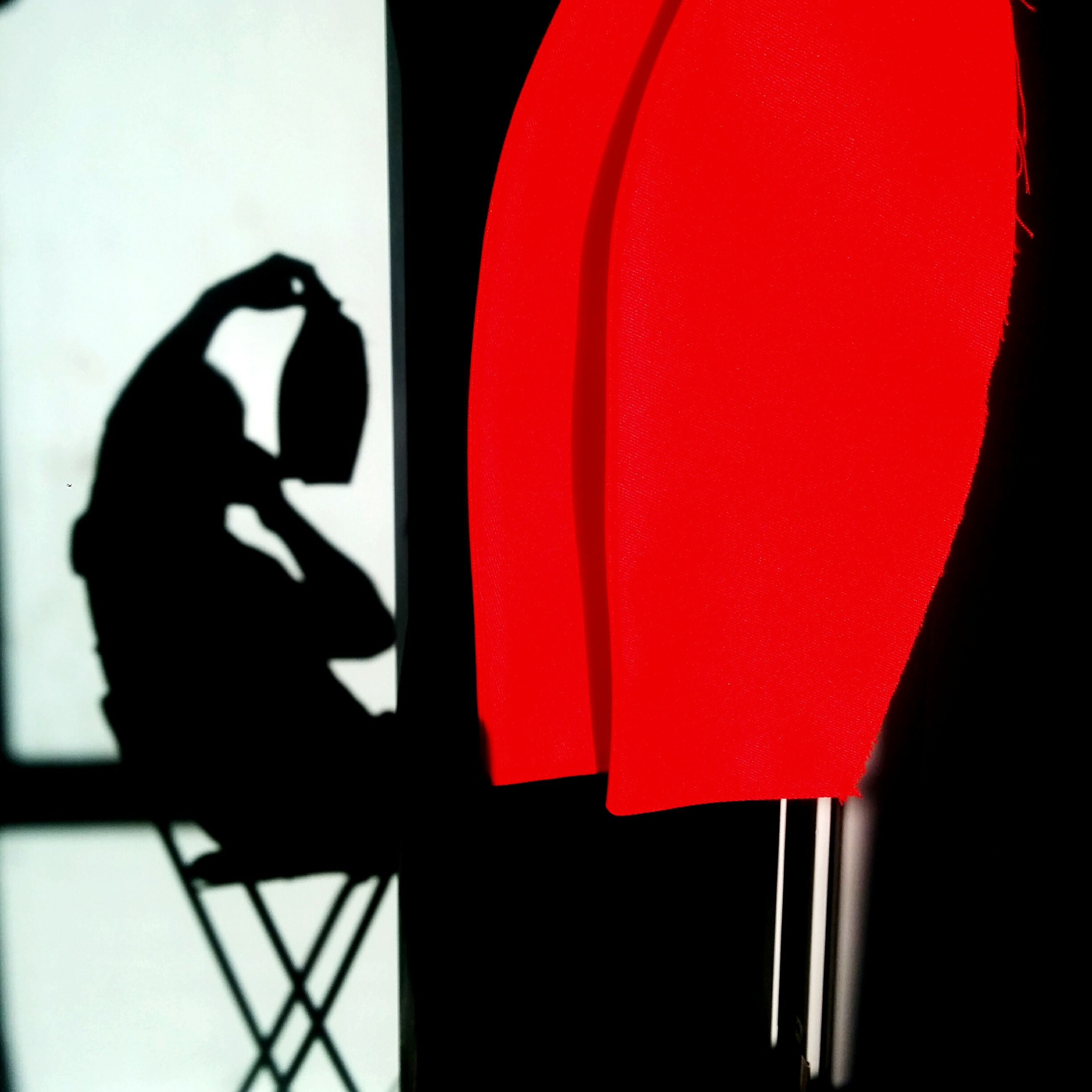indoors, red, lifestyles, close-up, standing, person, men, unrecognizable person, part of, holding, shadow, window, leisure activity, home interior, wall - building feature, day