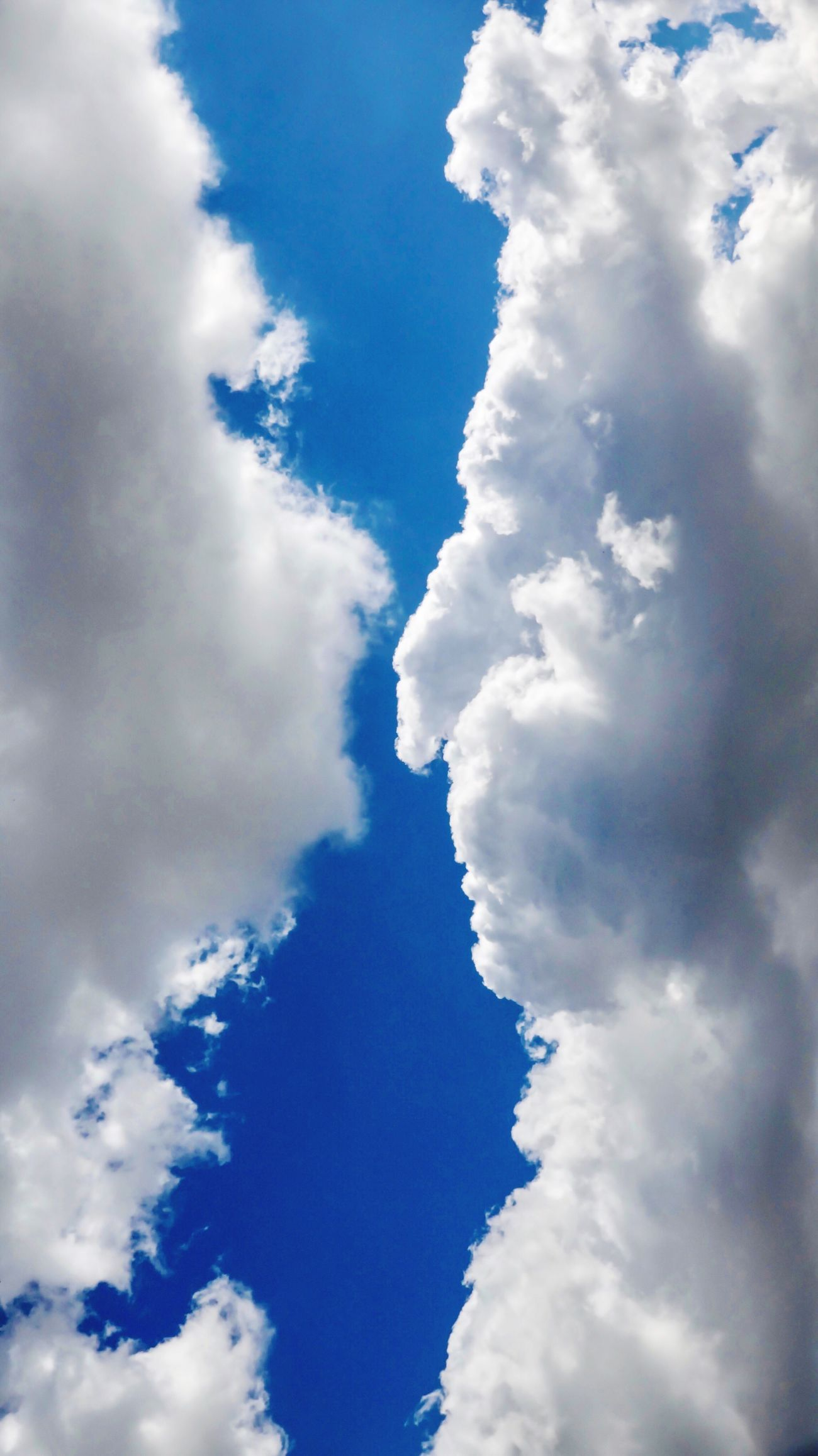 After a heavy Rain series: Clouds-Pic-21 Cloud - Sky Sky Low Angle View Nature Tranquility Blue No People Cloudscape Day Cumulus Cloud Environment Beauty In Nature Outdoors Close-up