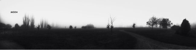 What Lies Beyond... Fortheloveofblackandwhite Landscape Trees TreePorn Landscape_Collection Blackandwhite EyeEm Best Shots Foggy Tadaa Community