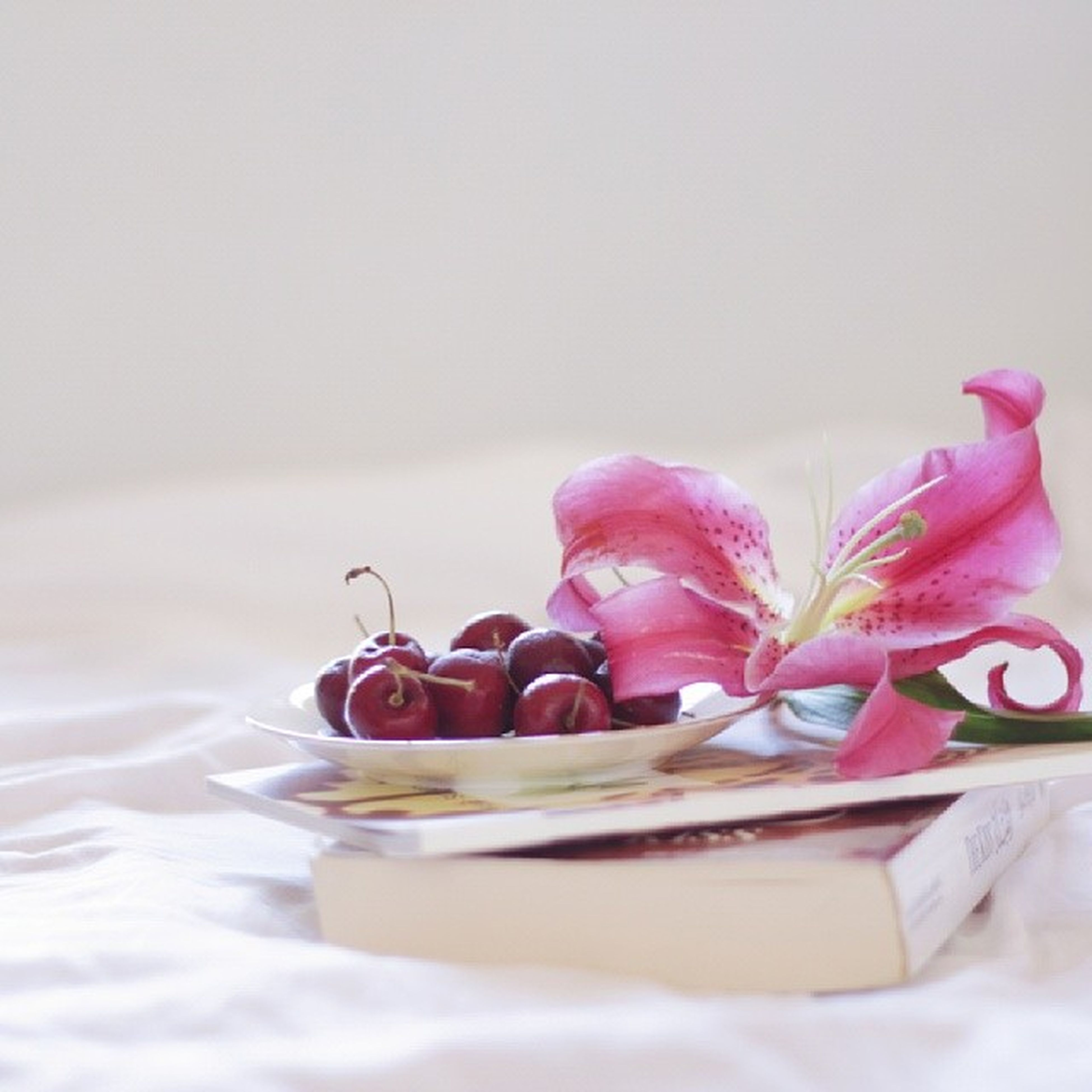 food and drink, food, freshness, still life, indoors, sweet food, table, indulgence, healthy eating, dessert, ready-to-eat, close-up, fruit, plate, selective focus, temptation, bowl, white background, focus on foreground