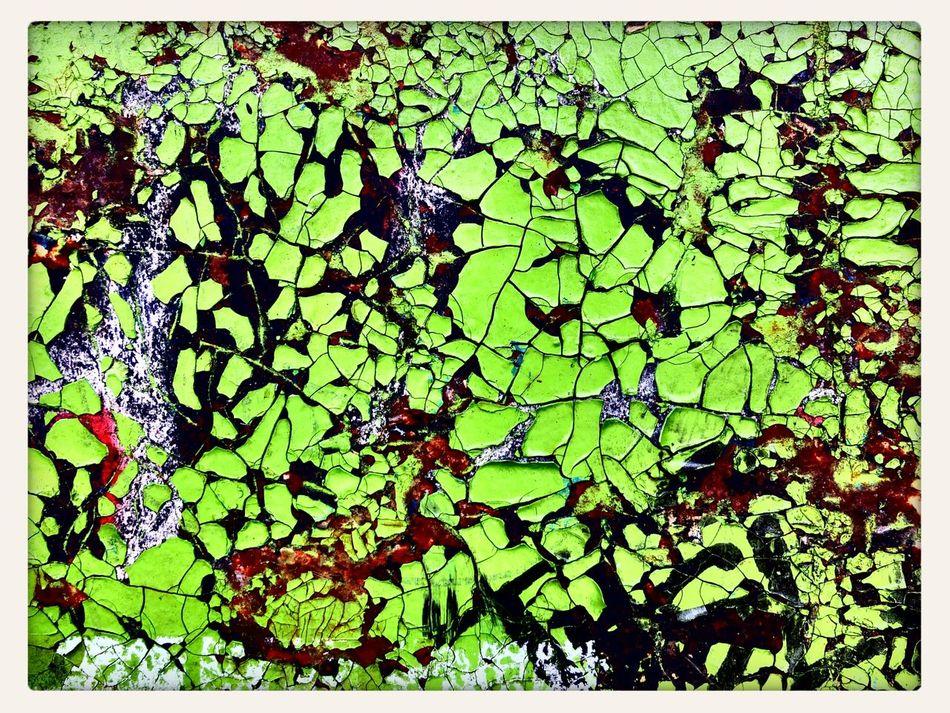swimming green Vernis Craquelé Crazed