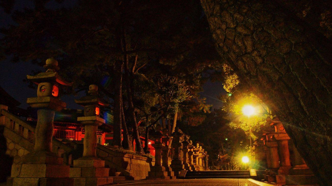 灯篭のある道 Introducing Culture Of Japan Which Must Be Left To The Future…… 未来に残す日本の文化 Nightphotography Japanese Shrine