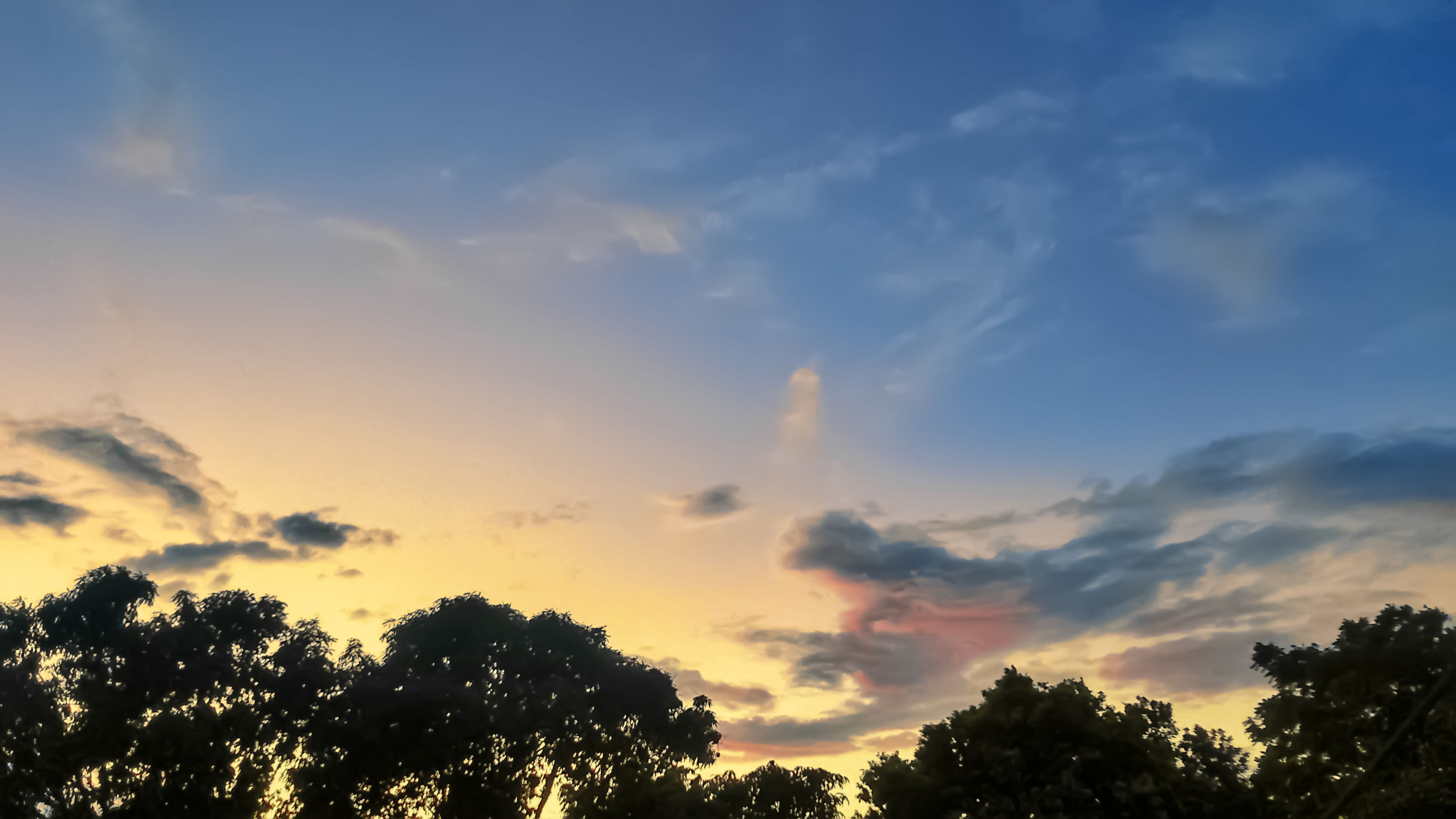 tree, sky, low angle view, sunset, silhouette, beauty in nature, tranquility, scenics, cloud - sky, tranquil scene, nature, cloud, idyllic, growth, blue, outdoors, cloudy, orange color, no people, sunlight