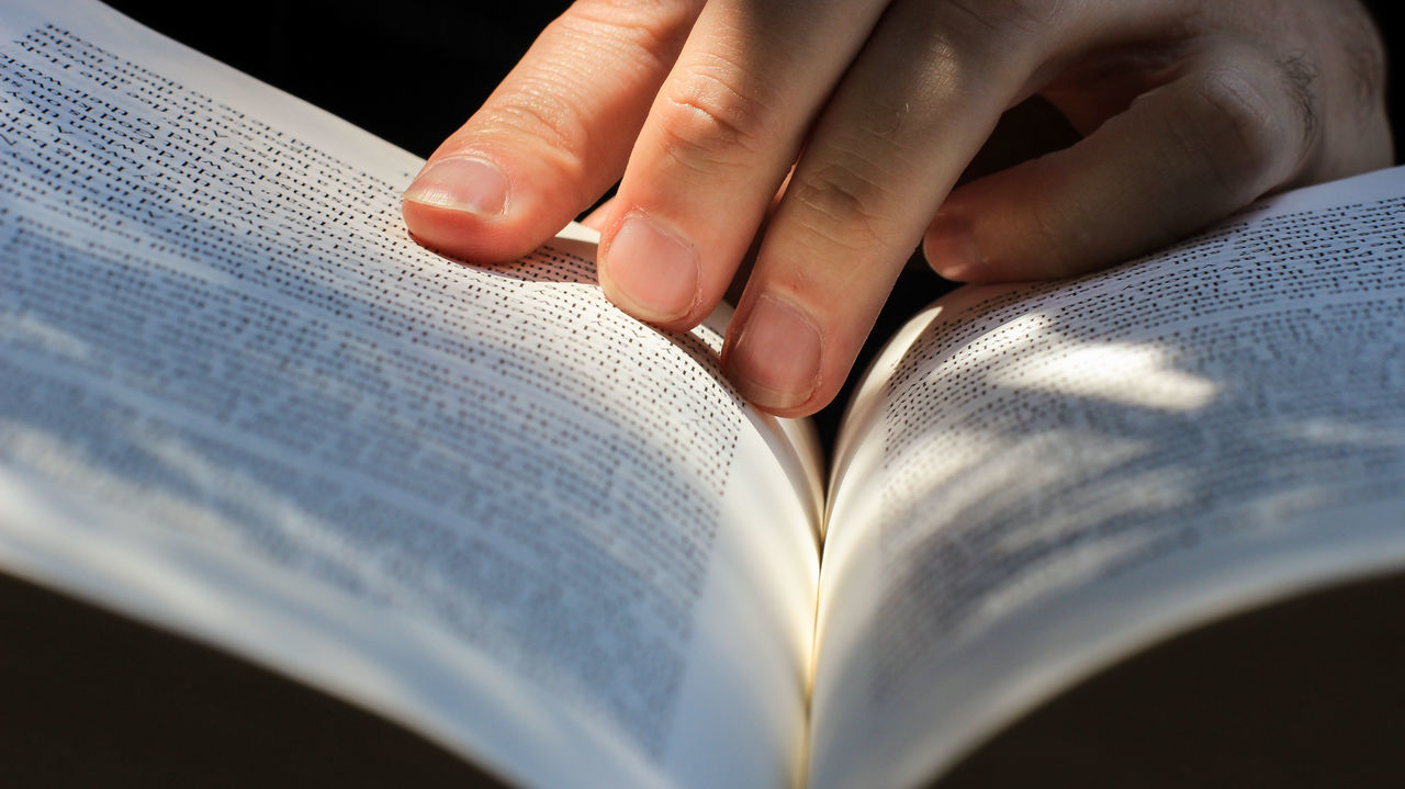 Beautiful stock photos of books, Book, Day, Human Body Part, Human Hand