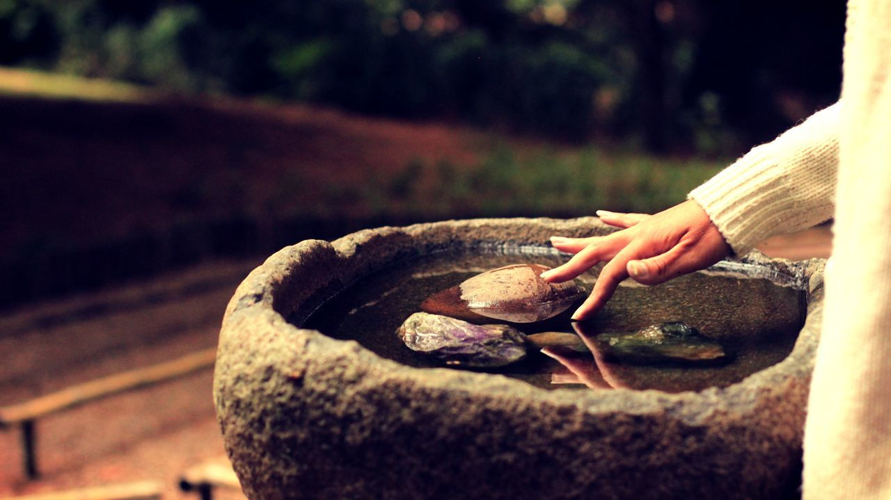 Beautiful stock photos of spa, Bowl, Day, Mid Section, Nature