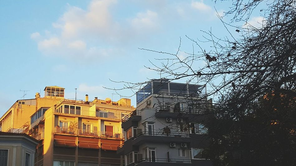Building Exterior Architecture Sky Built Structure No People City Outdoors Day Streetphotography Everyday Lives Urban Life Urban Life Urbanphotography Traveling Travel Urban Landscape Architecture Athens Athens, Greece Adapted To The City Window High Section City Eyeem Paid