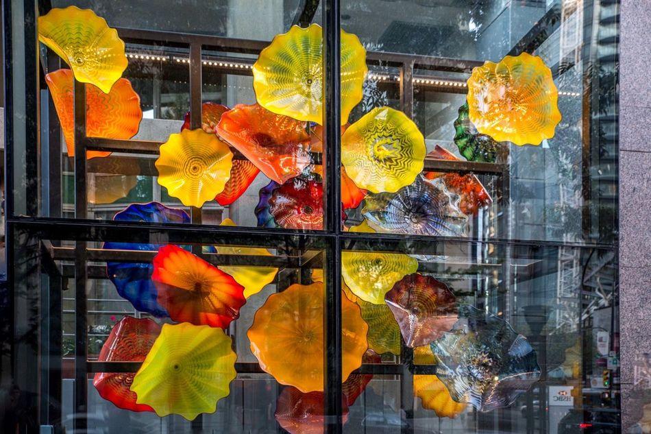 Pretty Umbrellas Umbrellas In The Sky Colorful Umbrellas Smiling Just Because Vancouver BC Canadaplace Canada BC