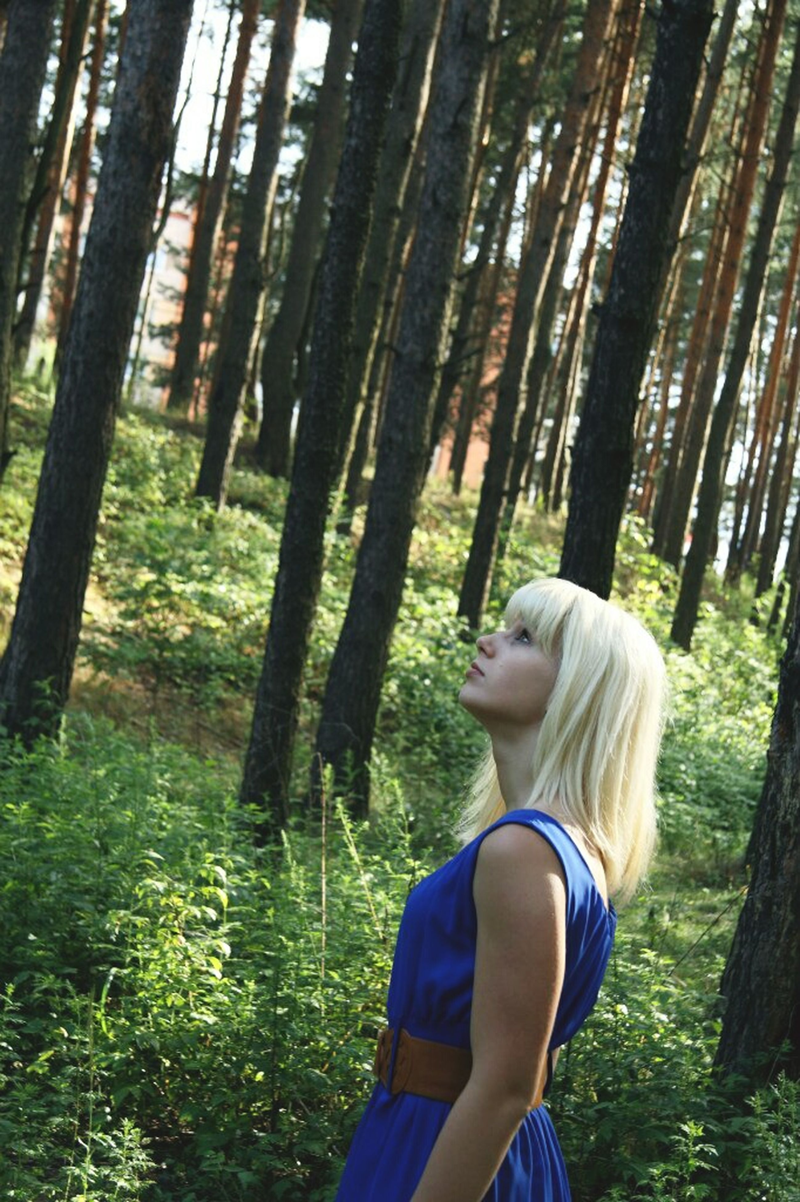 tree, lifestyles, leisure activity, casual clothing, tree trunk, young adult, person, three quarter length, sunlight, young women, rear view, forest, standing, long hair, grass, waist up, growth