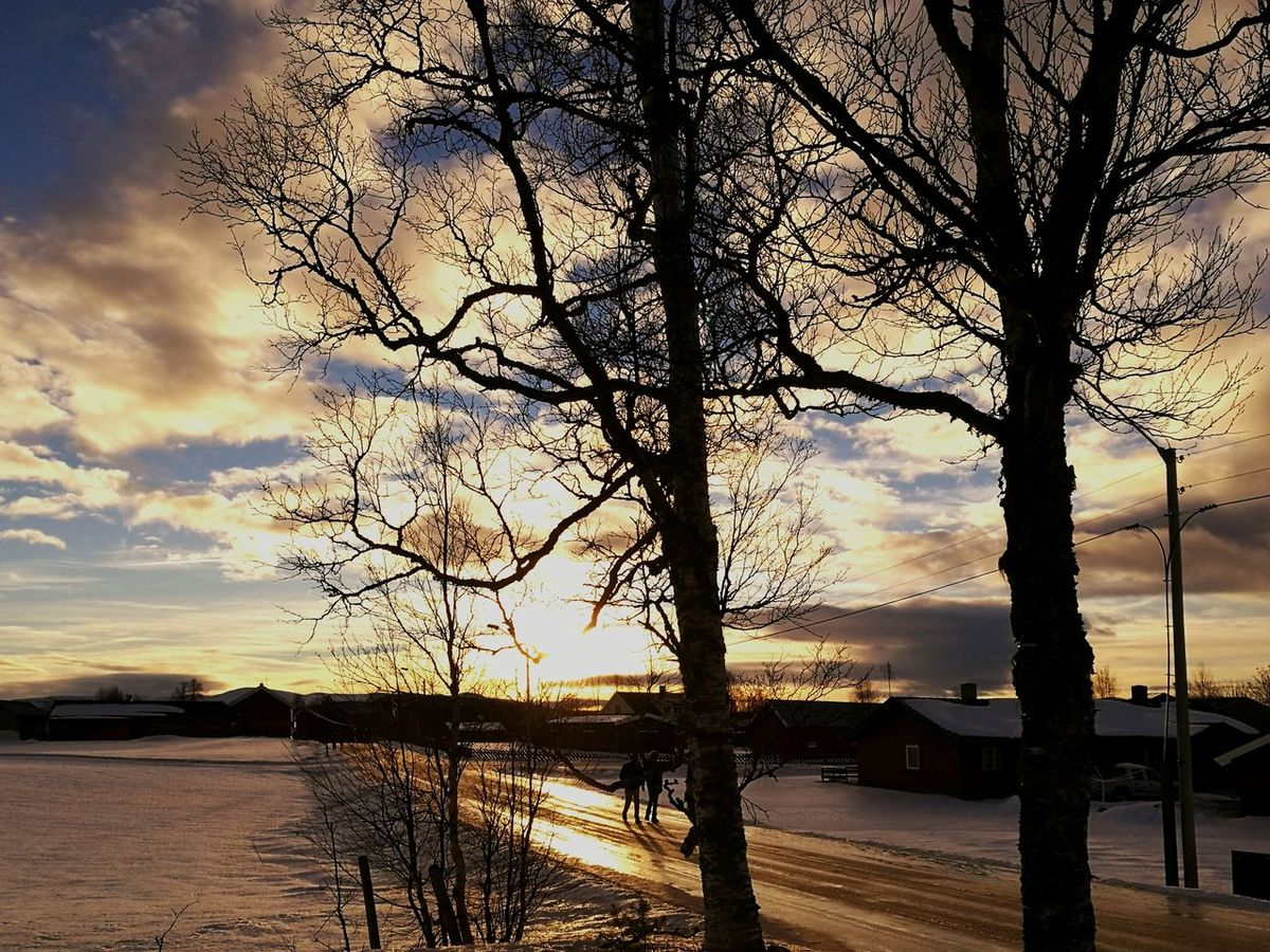 Sky Cloud - Sky Tree Day Dramatic Sky Nature Outdoors Norge🇳🇴 Norway🇳🇴 Hedmark Snow ❄ Cold Winter ❄⛄ Jumaa_wahab Awesome I Love Nature! Beauty In Nature Huawei Shots HuaweiP9 My Year My View Street Relaxing Outdoor